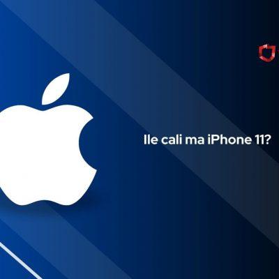 ile cali ma iphone 11